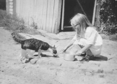 """Feeding """"Timothy"""" the cat - Greensborough, VIC, Gordon Binns (State Library of New South Wales collection) Tags: statelibraryofnewsouthwales"""