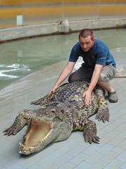 Thailand Crocodile Farm (nathansmiddy) Tags: thailand crocodile farm thailandcrocodilefarm thailandcrocodile crocodilefarm man lad boy sit sits it mansits mansitson mansitsoncrocodile