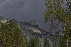 Wall of the Valley (dcnelson1898) Tags: yosemitenationalpark california sierranevadamountains sierranevada sierranevadas mountains nps granite glacier outdoors valley yosemitevalley