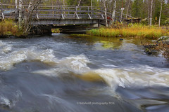ksjoki. Muonio. Finland. Lapland. (Natalie-sun) Tags: ksjoki muonio finland lapland suomi syksy autumn lappi canon eos 5d mark iii