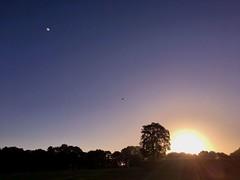 Der frhe Vogel... (BrigitteE1) Tags: sonnenaufgang sunrise september bremen deutschland germany hundespaziergang dogwalk frh early landschaft landscape bume trees himmel sky