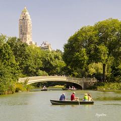 New York Central Park. Bow bridge (regis.muno) Tags: newyork manhattan usa nikond7000 centralpark park parc bowbridge bridge pont
