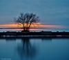 a lonesome tree (Rex Montalban Photography) Tags: niagara stitched portdalhousie hss vertorama rexmontalbanphotography sliderssunday