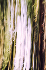 water& trees (beelzebub2011) Tags: canada vancouver britishcolumbia icm clevelanddam intentionalcameramovement