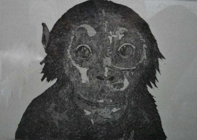 34 'The Chimp' by Mirna Sarajilic