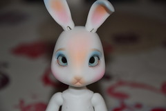Willow (Girly Toys) Tags: piposdoll rooney basic edition bunny jrpi rabbit lapin willow white skin collection doll bjd lapine missliliedolly miss lilie dolly aurelmistinguette girly toys collectible girlytoys