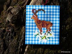 Bgelperlen Steinbock (petuniad) Tags: alpine chic perler prlplattor hamabeads strijkkralen alpinechic huettenzauber buegelperlen