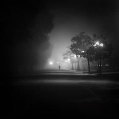 Trouble Will Find Me (Arianna_M) Tags: longexposure light bw misty fog night florence firenze ghosts luce thenational fantasmi lungaesposizione parcodellecascine alphasonydslr350 imoutofmymindthinkyoucanwait ivebeenrunningasleeplessrun imwayoffthelinethinkyoucanwait