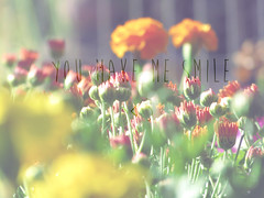 You make me smile ♥ (Caaru) Tags: flowers me colors smile make warm soft you youmakemesmile