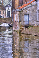 A Swan in Bruges (Cat Girl 007) Tags: old homes house water architecture buildings reflections canal spring swan europe belgium bricks medieval neighborhood bruges explored