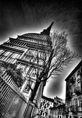 Mole Antonelliana B&W (ludozegna) Tags: life road city sky bw italy white mountain cinema black blur alps tower skyline museum foglie alberi clouds canon landscape torino europe strada italia european dynamic creative atmosphere palace piemonte cielo land museo mole albero alto alpi altezza bianco piedmont nero paesaggio citt palazzi monviso antonelli antonelliana stratorino monteviso