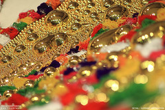 MG_3455 (PRATHAPSTOCKIMAGE) Tags: india elephant festival canon religion decoration kerala trissur pooram nettipattom eos60d