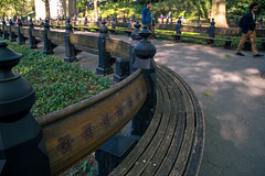 124/365 Bench with carved flowers (Andriy Prokopenko) Tags: nyc newyork bench unitedstates centralpark manhattan wideangle day124 canonef24105mmf4lisusm canon6d day124365 3652013 365the2013edition 04may13