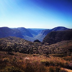 View over Grose Valley, from this morning's bush walk (auxesis) Tags: square squareformat inkwell iphoneography instagramapp uploaded:by=instagram