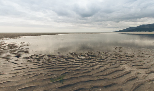 Murlough Nature Reserve & Beach
