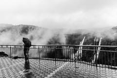 She | Jog Falls,India (vjisin) Tags: waterfalls falls jog karnataka india asia inexplore composition tree water mist fog cwc chennaiweekendclickers blackandwhite monochrome monsoon westernghats ghats nikond3200 nikonofficial nikon nikonindia cwc534 twop outdoor sky serene cloud indianwoman woman she