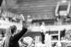 UT 2016 Orange & White Volleyball Scrimmage (Moogul) Tags: nikon d500 dx 85mm 18 85mm18g 18g nikkor ut texas longhorn scrimmage