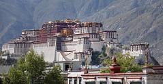 "Tse Podrang ""Summit Palace"" is another name for the Potala Palace, Tibet 2015 (reurinkjan) Tags: tibetབོད བོད་ལྗོངས། 2015 ༢༠༡༥་ ©janreurink tibetanplateauབོད་མཐོ་སྒང་bötogang tibetautonomousregion tar ütsang lhasaལྷ་ས།county lhasa potalapalaceཕོ་བྲང་པོ་ཏ་ལ།phobrangpotala རྩེ་པོ་ཏ་ལའི་ཕོ་བྲང་rtsepotalaiphobrang པོ་ཏ་ལpotala རྩེ་ཕོ་བྲང་tsepodrang potalasredpalaceཔོ་ཏ་ལའི་ཕོ་བྲང་དམར་པོpotalepodrangmarpo potalaswhitepalaceཔོ་ཏ་ལའི་ཕོ་བྲང་དཀར་པོpotalepodrangkarpo potalathesummitpalaceརྩེ་ཕོ་བྲང་པོ་ཏཱ་ལtsepodrangpotala lakenaga nagapond tibetanarchitecture buildingstyle tibetanlandscapepicture landscapeཡུལ་ལྗོངས།yulljongsyünjong landscapesceneryརི་ཆུ་ཡུལ་ལྗོངསrichuyulljongsrichuyünjong landscapepictureཡུལ་ལྗོངས་རི་མོyulljongsrimoyünjongrimo"