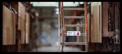 _MG_9990_s (dxyShen) Tags: toronto brickworks bokeh cinematic canon 5dmkii nikon 200mm f2