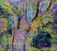 Pleasant Notions Regarding the Life Cycle of Trees (Rob Goldstein -Thanks for your support) Tags: awesome artistic abstracted texture techniques tree color colorful colors vibrant virtualreality artbyrobgoldstein art surrealism foto abstract digitalart digitalpainting digital best blogging poetry amwriting