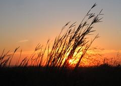 Loess Hills Sunset (Rich Jensen) Tags: sunset prairie loess hills iowa