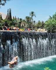 Two Worlds Travel Nature Water Motion Flowing Water Palm Tree Waterfall Tree Scenics Fountain Spraying Nature Flowing Running Water Outdoors Mid-air Swimming Enjoyment Flying Beauty In Nature Vacations Tourism People And Places (dinalfs) Tags: travel nature water motion flowingwater palmtree waterfall tree scenics fountain spraying flowing runningwater outdoors midair swimming enjoyment flying beautyinnature vacations tourism peopleandplaces