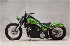 bikes-2009world-096-a-l