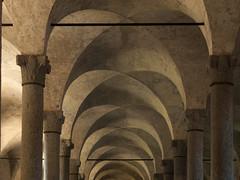 Pollobarca-090435-2 (pollobarca2) Tags: olympus ep2 castellovigevano vigevano pollobarca