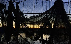 Sunset and Nets (❀ Rosemarie Christina ❀ [Slowly catching up]) Tags: sunset fishingnets iphone nature ocean sea flickrelite iphone7 artofimages