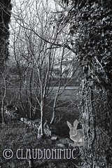 Spoon River Anthology Tom Merritt (claudionimuc) Tags: spoonriver edgarleemasters america selenio seppia crema poesia morti fernandapivano pivano antologia de andre pavesi 2016 art rural