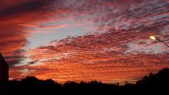Pauelo Maragato (sipp.photo) Tags: sun sunset clouds red orange sky trees horizon landscape light design god peace divine calm happiness satisfaction sol prdosol nuvens vermelho laranja cu rvores horizonte paisagem luz desenho divindade paz divino calma felicidade satisfao colorado pauelo
