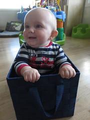 happy man in his basket (carolyn_in_oregon) Tags: portland oregon jacob