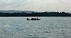 Boat at Kaptai Lake (sajan-164) Tags: country boat silhouette sparkle kaptai lake rangamati chittagong hill tracts bangladesh sajan164