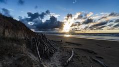 Bakers Beach, Tasmania. (Steven Penton) Tags: tasmania australia bakers beach narawntapu national park sunset sunrise