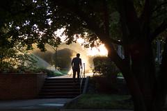 AM Starbucks Run (Alemap.1) Tags: landscape morning light sprinkler silhouette man