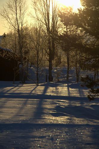 Morgenstund (DSC_4037)