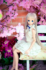 DSC01778 () Tags: dolls custom volks menma dollfiedream anohana meikohonma