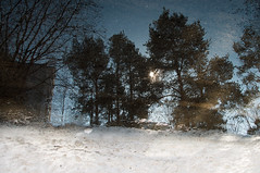 Reflections 3 (Matti Vinni) Tags: trees snow reflection water landscape pond maisema heijastus lammikko ltkk