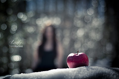 Lady (Franck Tourneret) Tags: winter red woman snow apple fruit rouge 50mm nikon waiting bokeh hiver femme desire neige snowwhite pomme dsir blancheneige attente d700