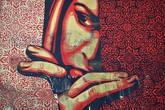 Peek-A-Boo... (Hi-Fi Fotos) Tags: city red urban art design nikon mural downtown pittsburgh pattern graphic pennsylvania sigma fairey peek shepard bold lowbrow d5000 18250mm cmwdred