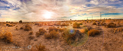 High Desert Pano (Elevated Media Group) Tags: california ca sunset panorama sun mountains tree set canon studio high media desert joshua pano horizon group l hesperia 28 elevated dennis f28 phelan victorville t3i dns adelanto 1635mm 600d arriaza