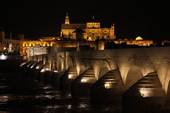 Andalucia, Corduba (muzzmedic) Tags: bridge light night river cathedral corduba