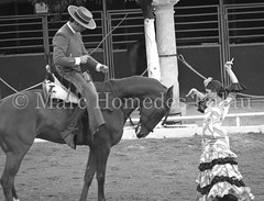 MHP_120622_10743.jpg (marc_homedes) Tags: show travel horse woman white inspiration black history tourism girl beautiful beauty horizontal contrast fun outside outdoors photography photo blackwhite dance nice spain ballerina pretty place shot dancing image famous scenic picture tourist andalucia historic unesco spanish cordoba andalusia flamenco whiteblack alandalus traveldestinations famousplace