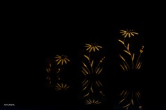 Candle Holders! (BGDL) Tags: geometric patterns candleholders nikond7000 ourdailychallenge bgdl nikkor50mm118g elementsorganizer11 geometricithink