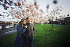 dreams of our yesterdays, and of tomorrows (manyfires) Tags: selfportrait film me oregon analog self portland michael us spring downtown blossom pinhole bloom pacificnorthwest sakura pdx pnw cherrytrees innova6x9pinhole