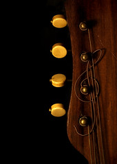 the wood and the wire (wobblyfingers) Tags: wood wire mandolin acoustic clef treble vintag bowlback eheadstock