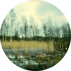 Outtake 7/52 - Landscape (Davey-van-Lienden) Tags: blue trees sky white snow color green ice water yellow clouds circle landscape thenetherlands leftover outtake davey tondo 52photochallenge orangeburns rememberthatmomentlevel1 rememberthatmomentlevel2