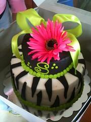 Zebra Daisy Cake, Christian County, KY, www.birthdaycakes4free.com