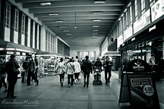Rautatieasema (Candace Nicole from Tickle My Whimsy) Tags: monochrome station train finland nicole helsinki central railway trains candace railways helsinkifinland centralrailwaystation candacenicole candacenicolephotography