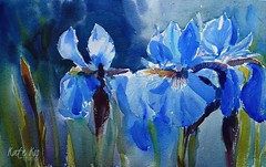 irises (katekos) Tags: irises irisesblue watercolor watercolour watercolours painting akwarela katekos floral floralwatercolor flowers kwiaty irysy art nature
